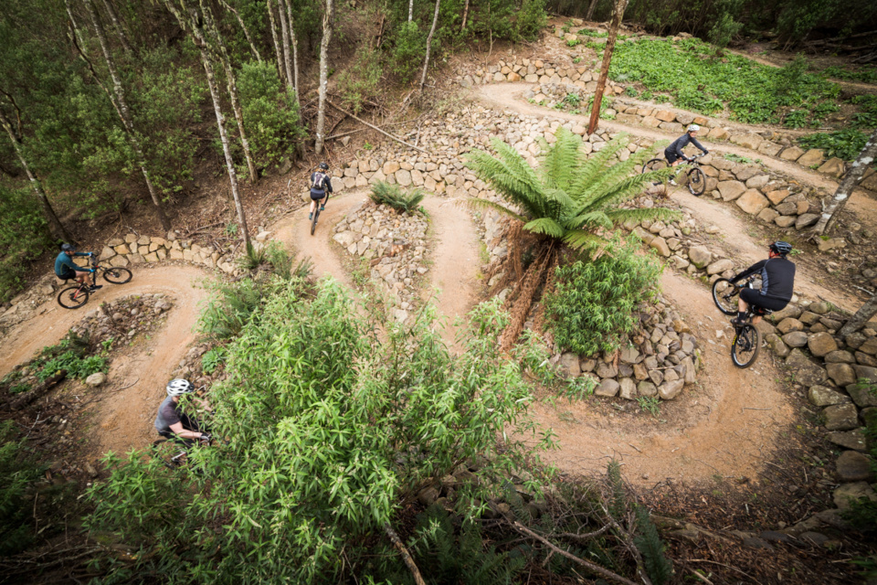 Blue Derby Mountain Bike Trails – Tasmania's best…