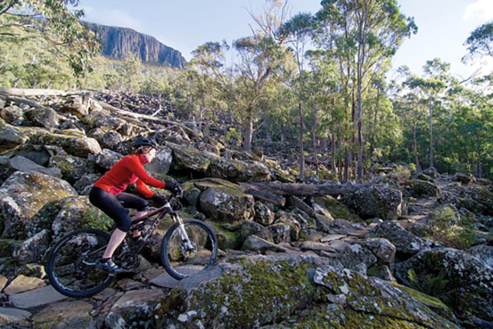 Mountain biking Tasmania: North South Track – Mountain Biking Australia
