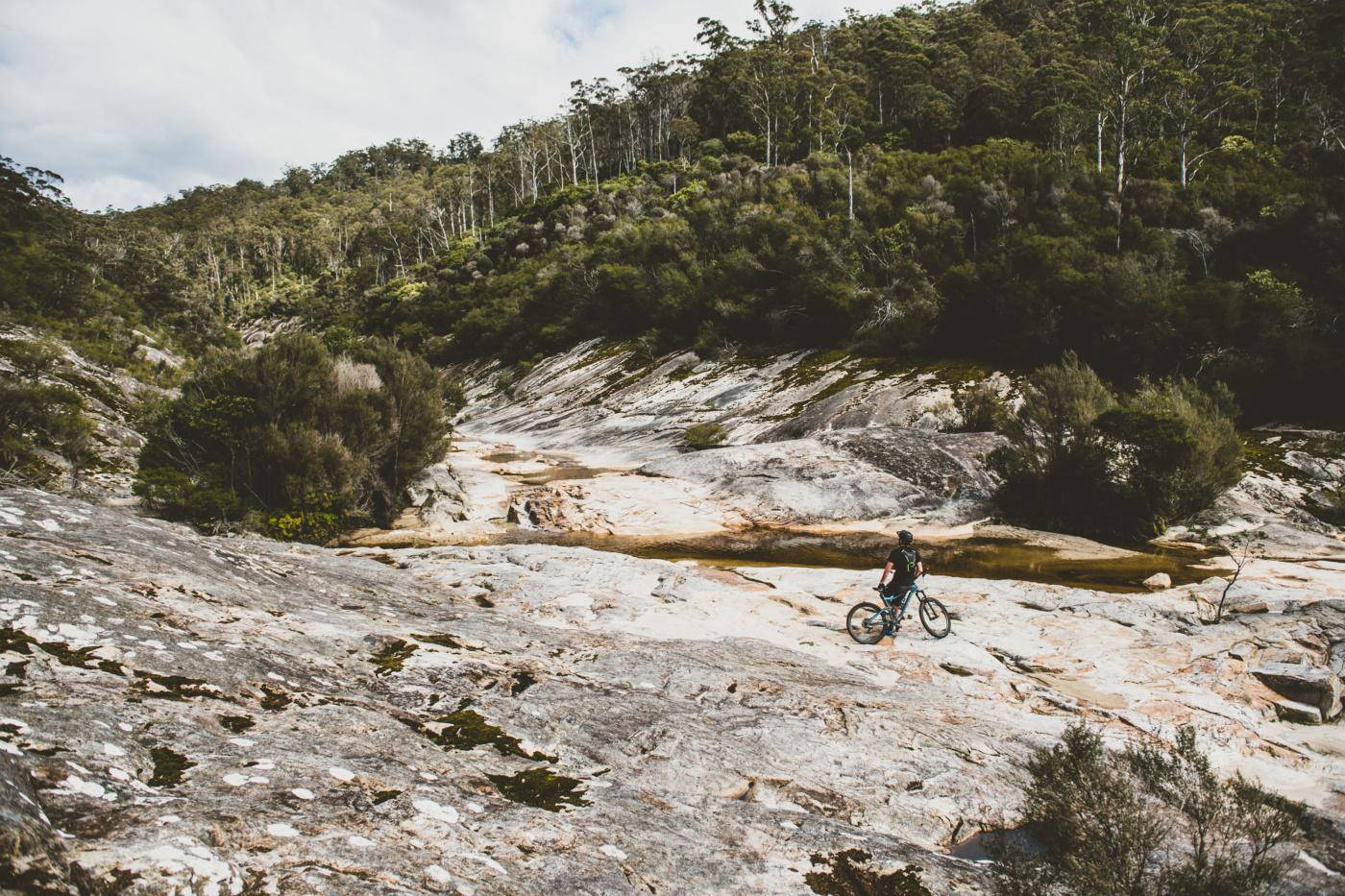 Cascade Valley, Derby Tasmania